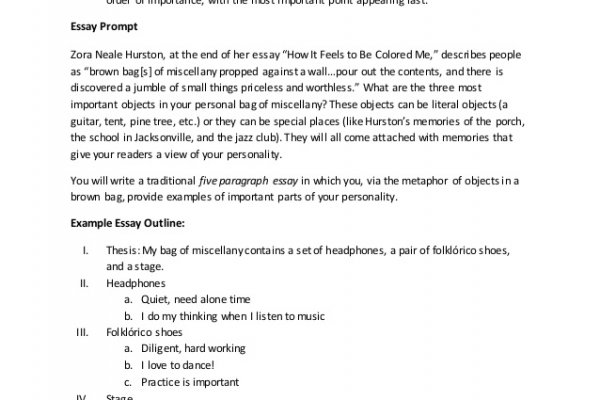 example exemplification essay
